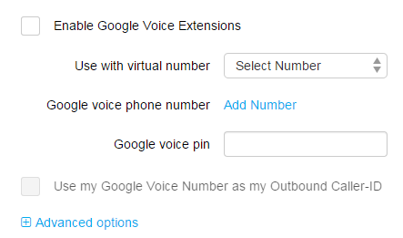 Google Voice interface